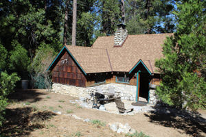 Top 50 Highest Rated Vacation Cabins in Idyllwild (Sorted by